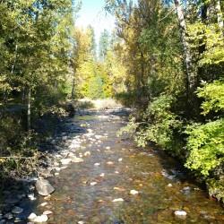 Rattlesnake Creek - Missoula Montana
